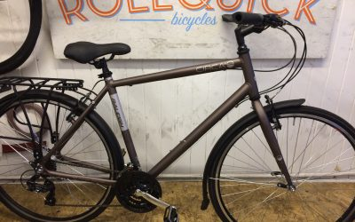 Mens Raleigh Circa hybrid bike