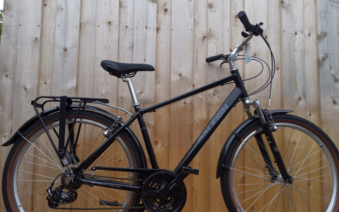 Raleigh Pioneer Trail – £350